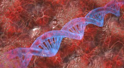 Strahlung zerstört DNA